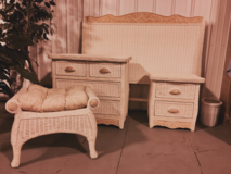 Pier 1 - Jamaica Wicker Collection Queen Bedroom Set in Joliet, Illinois