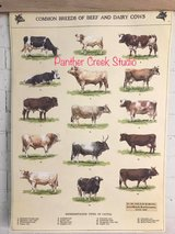 Farmhouse Vintage Style Posters Cows, Chickens Birds, Eyechart, typewriter Check them out in Fort Leonard Wood, Missouri