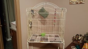 2 cockatials with cage in Fort Benning, Georgia