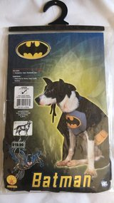 Batman dog costume in Camp Pendleton, California