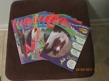 Pony Magazine #11 Issues Plus Club Extras in Naperville, Illinois