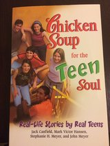 Chicken Soup for the Teen Soul (New) in Okinawa, Japan