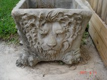 LION FACE Planter in Kingwood, Texas