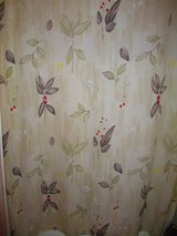 Bathroom Collection Shower Curtain rugs towels etc. in Pleasant View, Tennessee