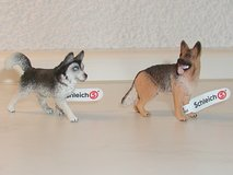 Schleich German Shephard and Husky in Ramstein, Germany