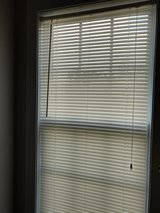 Mini-Blinds in Camp Lejeune, North Carolina