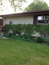 2 rooms for rent in Lockport, Illinois