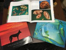 Coffee table books. Nature's best in Okinawa, Japan