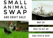 Animal swap and craft sale in Beaufort, South Carolina