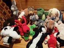Beanie babies in Aurora, Illinois