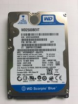 Western Digital 250Gb Laptop Hard Drive in Fort Campbell, Kentucky