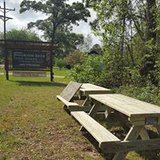 Outdoor Picnic Tables And Benches in Coldspring, Texas