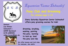 Pony grooming and horsemanship for kids in Ramstein, Germany