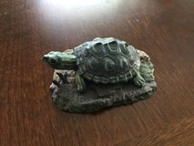 Turtle-Second Nature Design Wildlife Collectibles in Chicago, Illinois