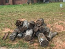 firewood-dried pecan wood in Warner Robins, Georgia