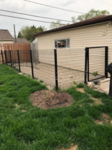 Dog Run Fencing in Naperville, Illinois