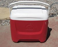 Nice Size Igloo Cooler in Alamogordo, New Mexico