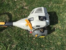 Weed Trimmer in Naperville, Illinois