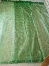 Beautiful Green W/Gold Accents Curtains in Las Cruces, New Mexico