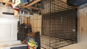 Large dog crate in Fort Lewis, Washington