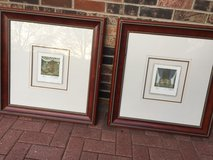 2 Large framed water color paintings in Naperville, Illinois