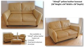 Leather loveseat in San Diego, California
