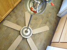Ceiling Fan in Ottumwa, Iowa