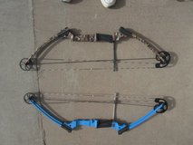 Right Hand (blue) Genesis Compound Bow in Alamogordo, New Mexico