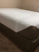 Queen Bed & Box Spring in Fort Campbell, Kentucky