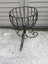 Beautiful Wrought Iron Plant Stand in Beaufort, South Carolina