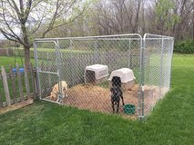 10x10 Steel Dog Kennel in Kansas City, Missouri