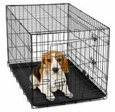 small Dog crate in Fairfield, California
