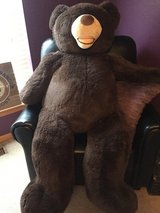 """Teddy Bear - Large 54"""" in St. Charles, Illinois"""