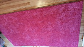 Area Rug in Elgin, Illinois