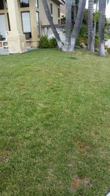 Lawn mowing and landscaping in Oceanside, California