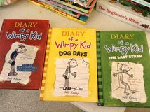 Diary of the wimpy kid in Lockport, Illinois