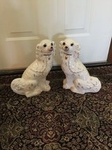 Two Staffordshire Dogs in Glendale Heights, Illinois