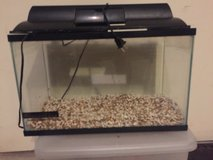 10 Gallon Tank with Lid & Rocks in Kingwood, Texas