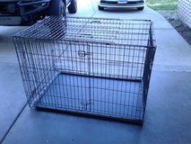 XL dog kennel in Vacaville, California