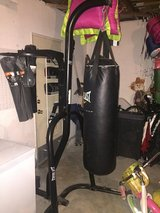 Everlast Heavy Bag and Speed Bag stand in Oceanside, California