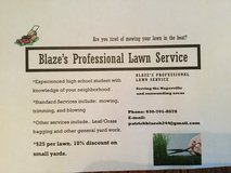 Blaze's Professional Lawn Service in Lockport, Illinois