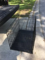 Kennel med w/ tray in Camp Lejeune, North Carolina