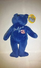 Nascar Dale Earnhardt Junior Jr  Blue Bear in Elgin, Illinois