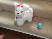Fur Real Friends Get up and Gogo My Walking Pet in Aurora, Illinois