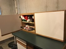 Kitchen cabinet in Orland Park, Illinois