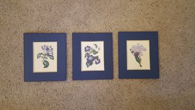 3 Matted Floral Prints in Travis AFB, California