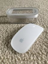 Apple Mouse in Yorkville, Illinois