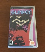 Gunpey, PSP in Fort Leonard Wood, Missouri