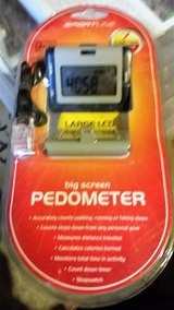 Pedometer in Sandwich, Illinois