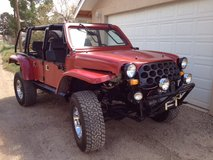 """RUNT""  New build,Street legal,Purpose built vehicle in Alamogordo, New Mexico"